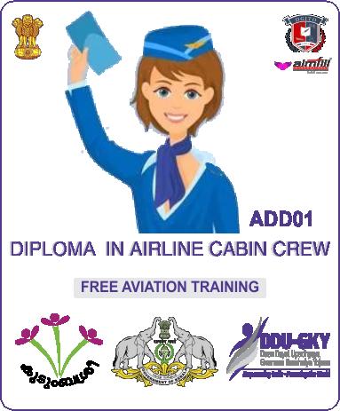 ADDO1 AIRLINE CABIN CREW - DDUGKY - DGITO