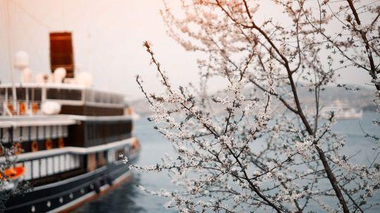 Pohřební rituál - Námořnický pohřeb