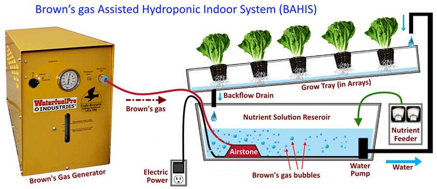 BAHIS: Brown's-gas-Assisted Hydroponic Indoor System