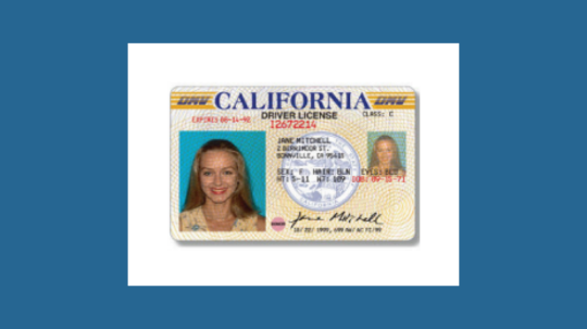 US, Canadian, or Mexican Valid Driver's License or a US official Non-Driver's ID