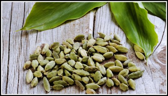 Organic Cardamom (Whole) - E-Silk Route Ventures (Pvt.) Ltd.