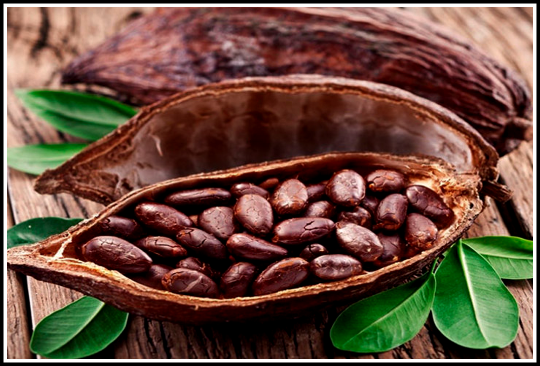 Cocoa (Whole) - E-Silk Route Ventures (Pvt.) Ltd.