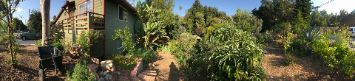 Marshall Landscape edible garden food forest permaculture sustainable regenerative Benoit Clement