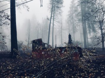 Paradise Camp Fire wildfire California Tetra Tech disaster recovery Benoit Clement