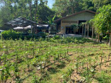 Doi Tung sustainable development agroforestry circular economy Benoit Clement BenoitClement.com