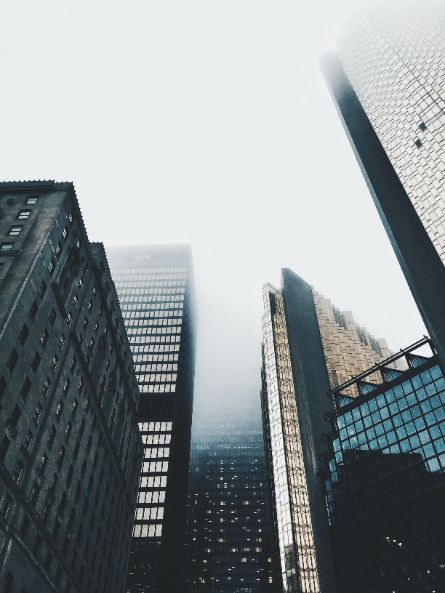 mist in the city