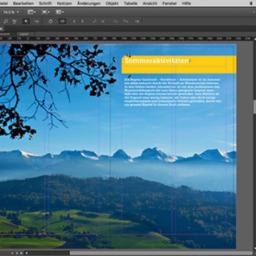 Adobe InCopy chính hãng