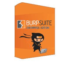 Burp Suite Enterprise chính hãng