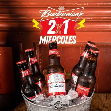 budweiser wings and beer palmira