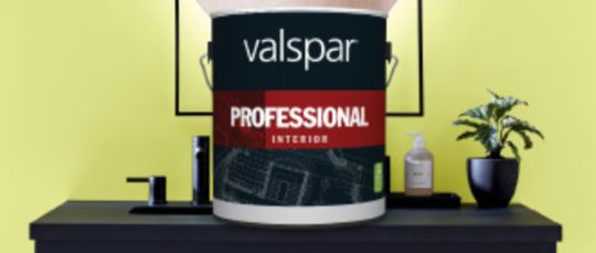 Valspar Professional Interior